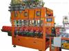 6升塑料桶自动化工灌装生产线,化工灌装机,防爆灌装机,涂料灌装机